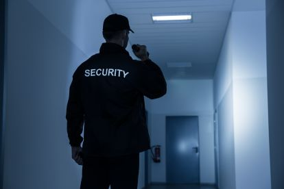 Dark Angel Security Ltd