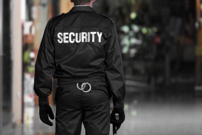 Protection Pitbull Ltd