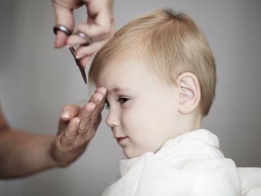 Cutter Hair Doctor