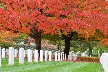 Never Forgotten Memorial Tending Services
