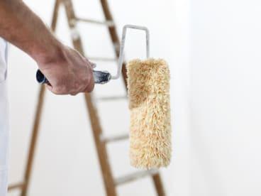 David Rouat Peinture