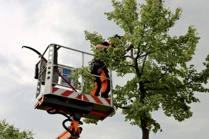 Smith's Tree Services