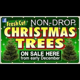 Leigh Trees