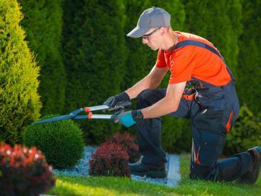 N Safe Hands Landscaping