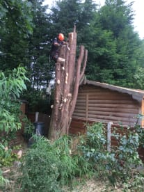 Gap Garden And Tree Care