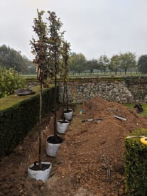 Bridge Garden Planning