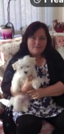 Professional Services By Jane - Pet Care, Boarding, and Counselling & Animal Assisted Therapy