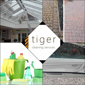 Tiger - Cleaning Services