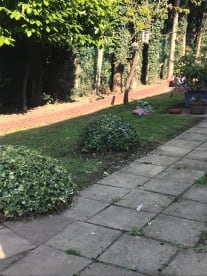 Meljas Home And Garden Maintenance