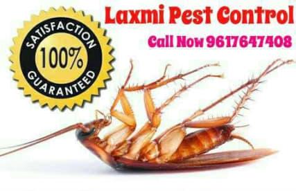 Laxmi Pest Control Service