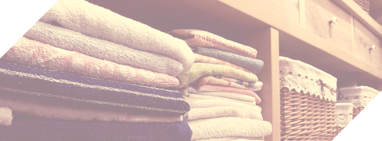 Lux Laundry Co.