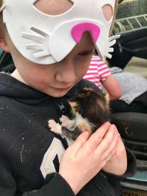 Harry and Rosa - Petsitting Services