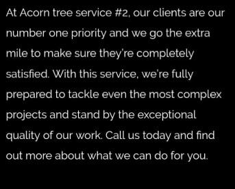 Acorn Tree Service 2