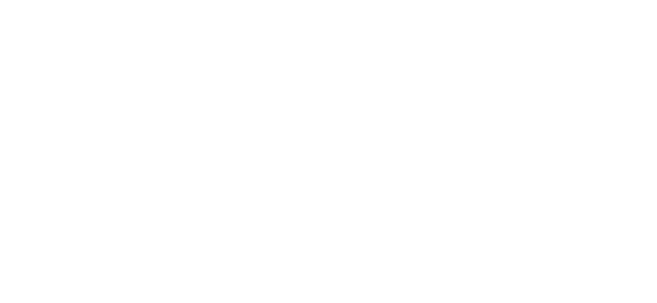Royalty Enhancement and Detail Services