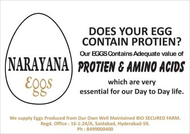 Narayana Eggs