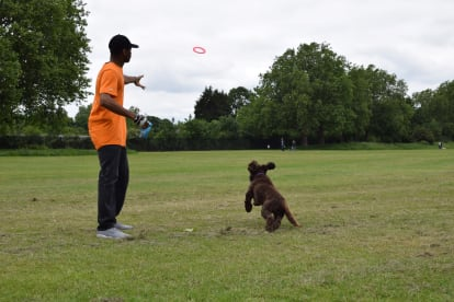 Paw2Floor Dog Services