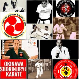 Martial Arts Lessons