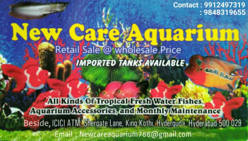 NEW CARE AQUARIUM