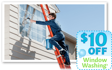 Mr. Window Cleaner and More