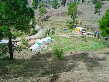 Gururani Agri & Dairy Products
