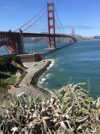 Rahn Recommends |  San Francisco | eConcierge Services