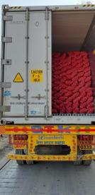 Ocean Logistic Jnpt