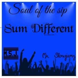 Rythym N Rap Ent Sum Different