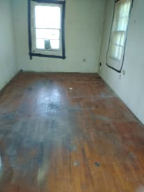 Payneless Property Clean Out