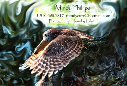 Mindy Phillips Photography