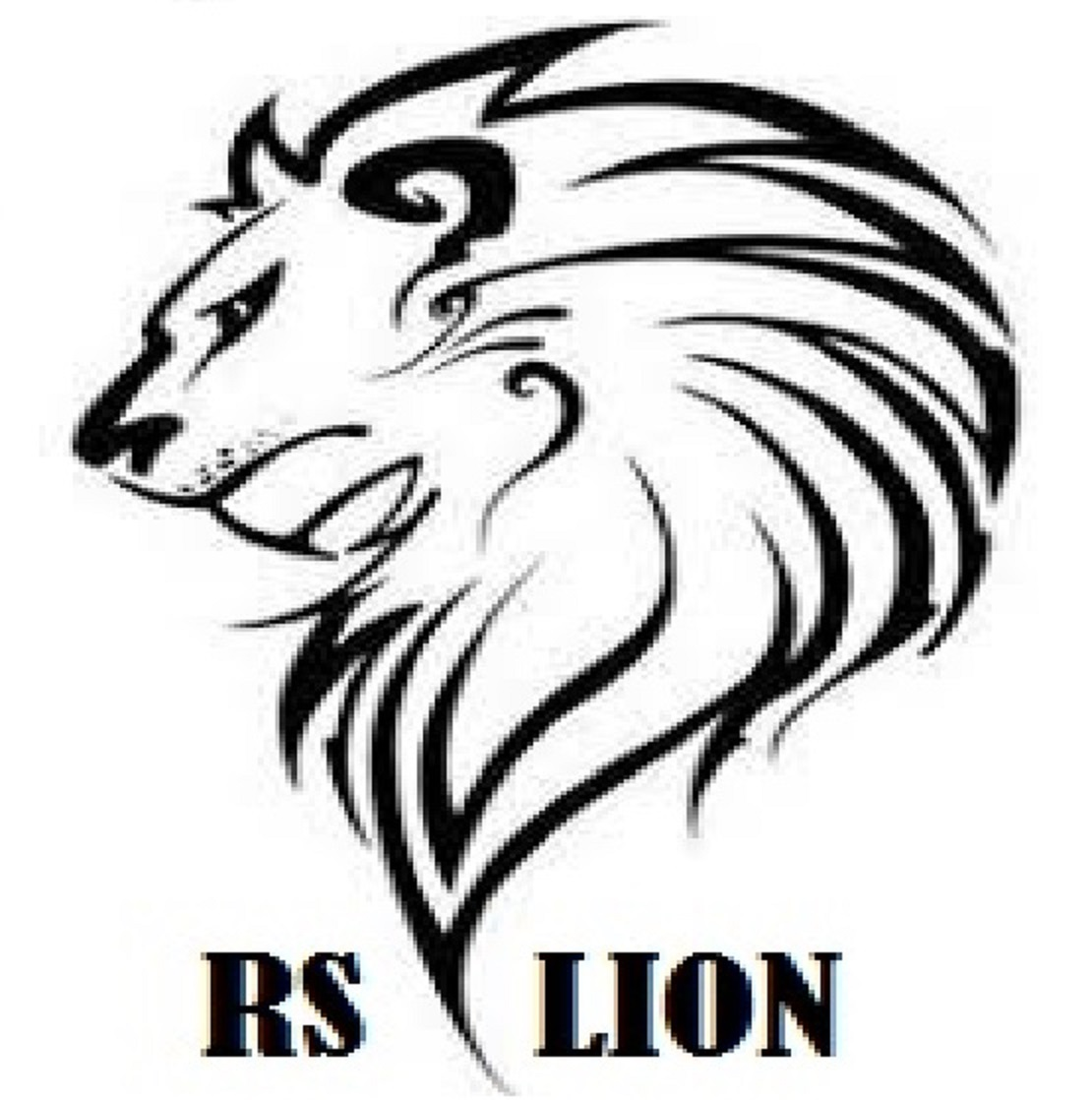 RS Lion Limited