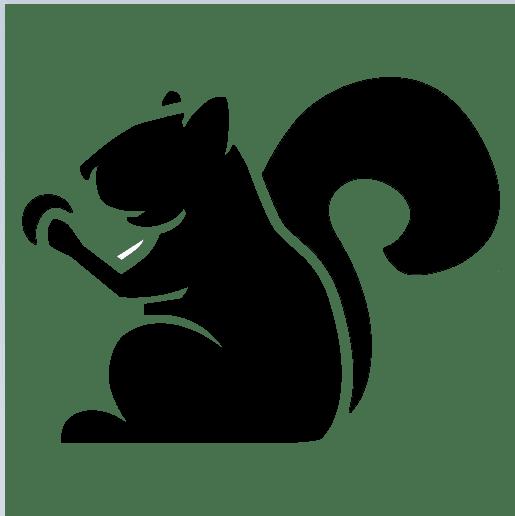 Chipmunk Development