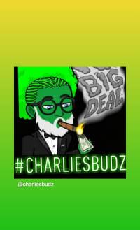 #Charliesbudz