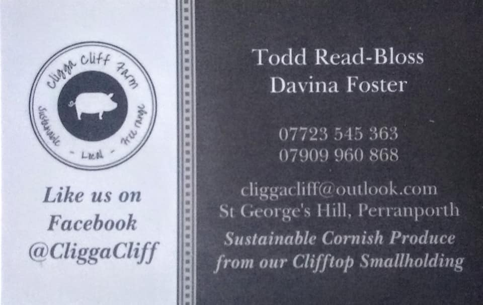 Cligga Cliff Farm