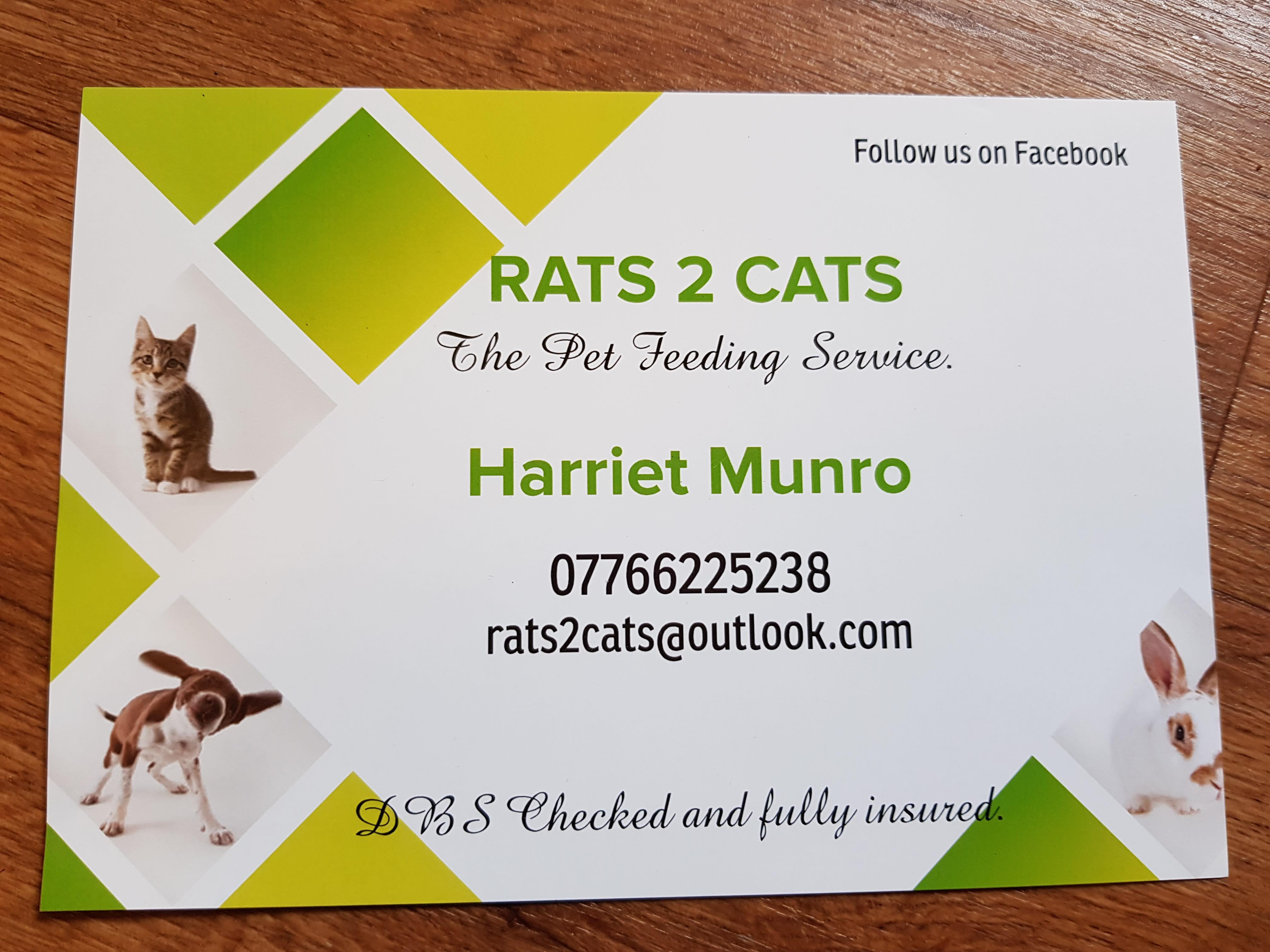Rats 2 Cats