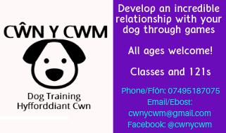 Cŵn y Cwm Dog Training